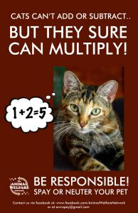 AWN-Cat-Spay-Poster